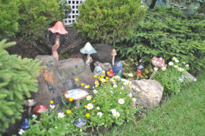 A lovely toadstool collection makes you wonder if fairies live here.