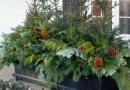Beautiful Outdoor Winter Planters
