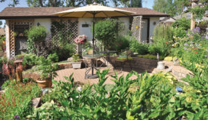 The backyard is an oasis surrounded by greenery and beauty.