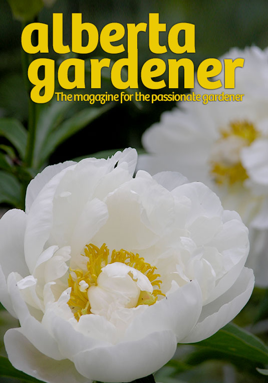 Alberta Gardener Magazine Canada peonies